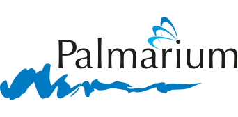 Palmarium